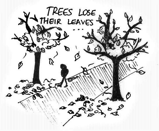 Cartoon Hair and Leaves